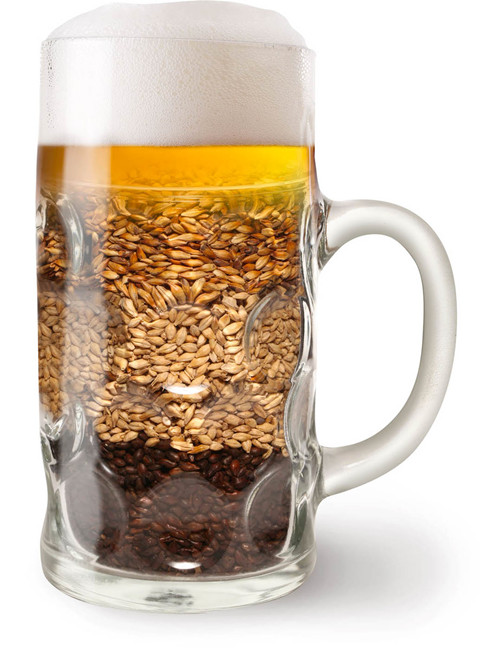 4dd7fd81a0b3bbe57ca5ca271669162d_Beer-And-Barley-In-Beer-Glass_副本